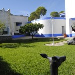 villa with pool in alhaurin